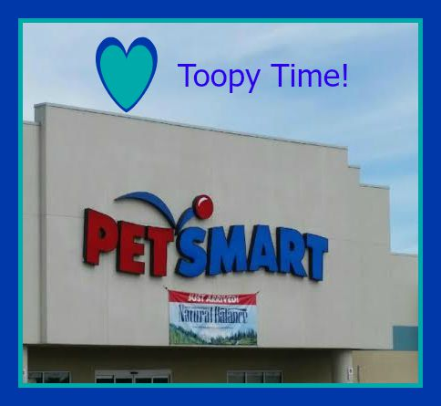 How We Pamper Our Toopy at Petsmart