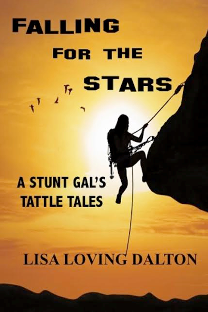 Falling for the Stars Book Spotlight