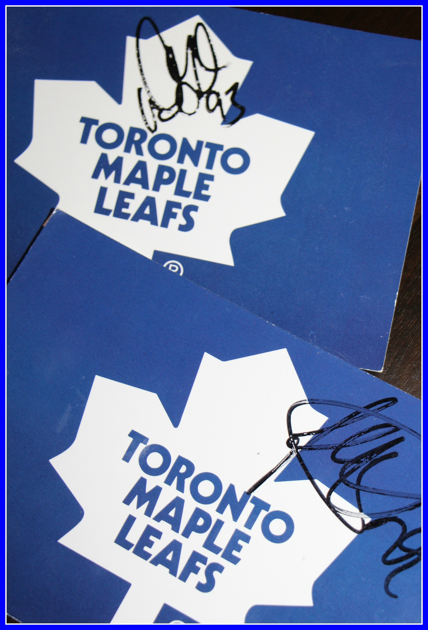 Calling all Toronto Maple Leafs Fans and their Lil Partner