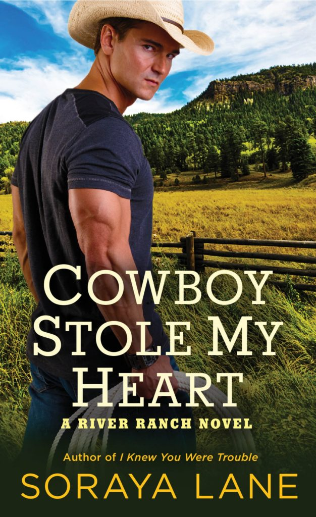 Cowboy Stole My Heart Book Review