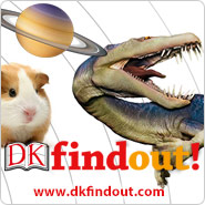 dk-find-out